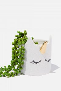 Cotton-On-Small-Shaped-Planter